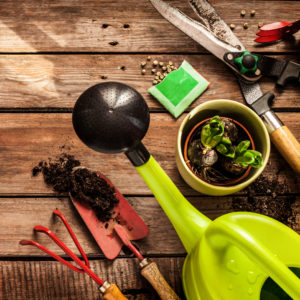 Удобрения, грунты, садовый инвентарь